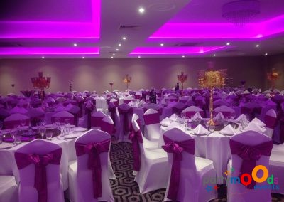Chair Covers & Backdrops11